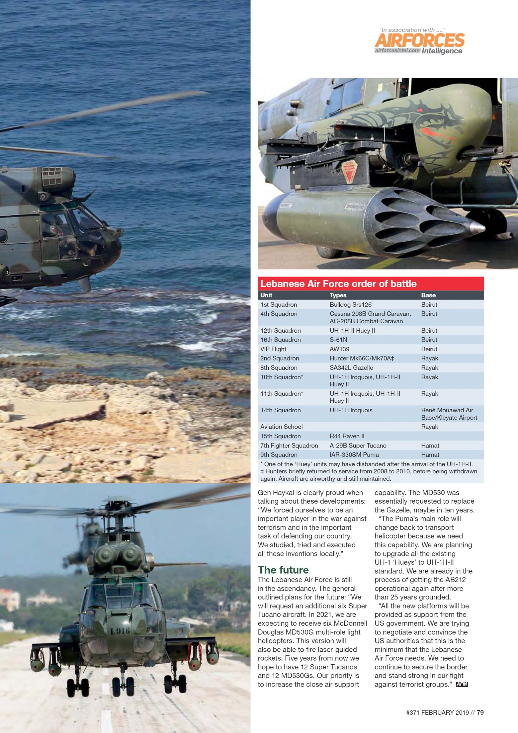 AirForces_Monthly_2019-02 (7)